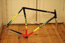 Vintage RAZESA Nerwig R811 Stahlrahmen Steel Frame Rennrad Bike L'Eroica VVGC