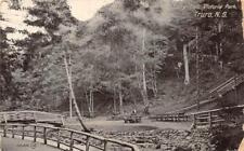 Fairy Dell Victoria Park Truro Nova Scotia Canada Postcard 1909