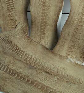 Ostrich Legs Skin Leather Grey Tapestry GL (%100 Genuine Ostrich Leather)