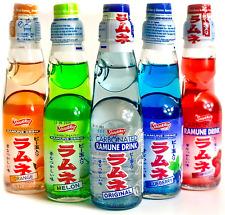 Ramune Japanese Soda Variety Pack - Shirakiku Multiple Flavors - Japanese Drink