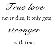 TRUE LOVE NEVER DIES Wall Vinyl Decal Quote Lettering Words Home Decor