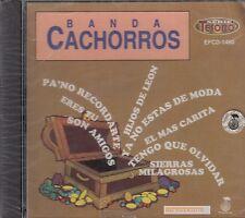 Banda Cachorros Hijos De Leon CD New Nuevo Sealed