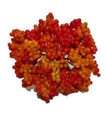 15 Stiele Beerenpick Beeren Ebereschen Weihnachten Advent Geschäftsauflösung