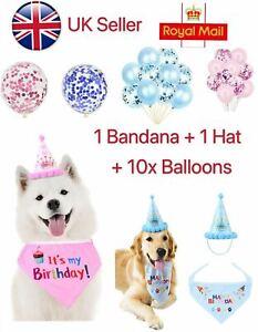 Toy Puppy Dog Cat Birthday Hat Cat Birthday Crown Shape Headwear