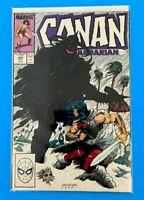 CONAN THE BARBARIAN VOL.1 #209 MARVEL COMICS 1988 VF/NM (1970-1994 SERIES)