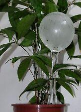 Bewässerungskugel, Glas-Durstkugel, Lumineszierend, Glaskunst-Schmidt