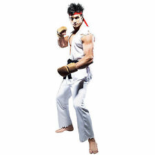 Adult Mens Street Fighter Costume Karate Kid Ryu Fighter Fancy Dress Ninja Lee