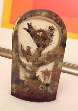Cathedral Window Lucite Encased Ecology Shadow Box - C. SHEATH 1979 - BIRDS NEST