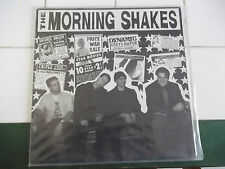 GARAGE PUNK THE MORNING SHAKES SEX BOOZE AND SIN