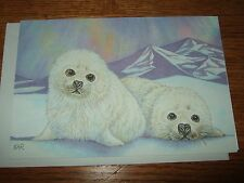 KAR northern lights Christmas card quality collection baby seals animals w/envel