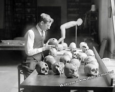 Photograph Anthropology Dr. Egberts Trephination Human Skulls 1926  8x10