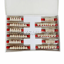 NEW Acrylic SYNTHETIC Resin Denture Teeth VITA Color Shade A2 Upper Lower -84pcs