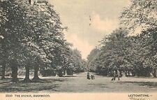 Leytonstone,Bushwood,London,U.K.The Avenue,Borough of Waltham Forest,Used,1904