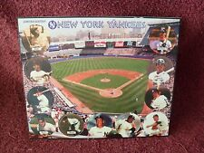 "FRAMED ""New York YANKEE"" POG (Milk Cap) COLLECTION (SET of ELEVEN (11))"