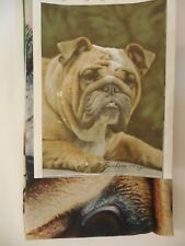 "English Bulldog Dog Breed House Flag 28""x40"" Every day use, Welcome"