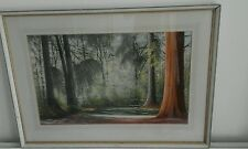 AUSTRALIAN PAINTING NEW FOREST GLADE BY ROBERT CAMPBELL FROM PASTEL SOCIETY W1