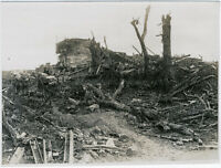 Orig-Pressephoto, 1.Weltkrieg, Zerstörungen bei Pozières, um 1916