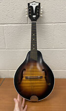 Vintage Kay Mandolin with Case, Marked N-1 L5921 USA