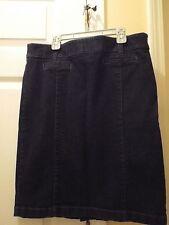 Ann Taylor Blue Jean Skirt Size 10