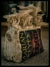Grow Oyster mushrooms on books and newspapers mycelium plugs spawn 4 dowels $5,,