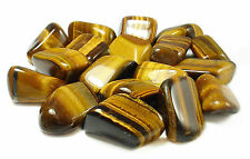 TUMBLED - (1) MED/LG TIGER'S EYE Crystal with Description Card - Healing Stone