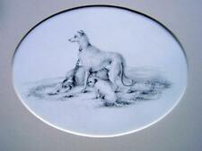 ANIMALS HUNTING DOGS RESTING ON A MOOR PENCIL ENGLISH SCHOOL C1840