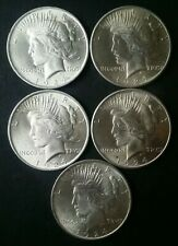 Lot of Five 1924 $1 Peace Silver Dollars