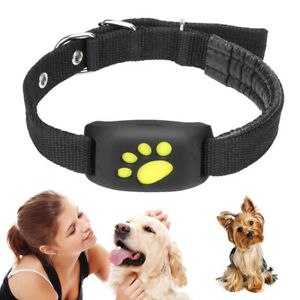 Magic Pet Collar Tracker GPS GPRS Dog Real Time Tracking Locator Device 2021 AF