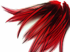 10 Pieces - Red Laced Long Rooster Cape Feathers