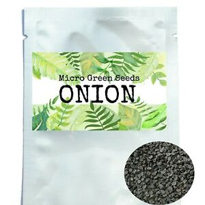 Organic Microgreen Seeds Onion Sprouting Seed