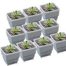 10pcs White Plant Flower Nursery Pots Planting Planter Garden Container Pot