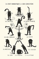Le Chat Domestique Poster! Domestic Cat and Character France Dorm Décor black