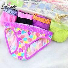 5pcs/lot Children Girls Underwear Cotton Kids Briefs Wholesale Panties 2-16 Year