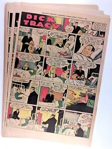 51 DICK TRACY and 36 SUPERMAN Sunday Comics (1940) - by Gould - Siegel & Shuster