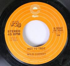 Soul 45 Wild Cherry - Hot To Trot / Put Yourself In My Shoes On Epic