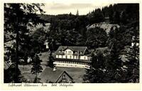 Wildemann Harz Niedersachsen Postkarte 1951 gelaufen Blick auf Hotel Waldgarten