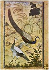Mughal - Peacock and a Peahen - MEDICI POSTCARDS