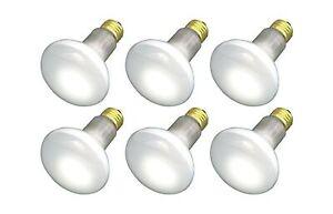 (Pack Of 6) 45R20/FL 120V - 45 Watt R20 Flood - E26 Base 45W - Light Bulbs