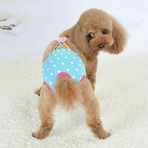 Female Pet Dog Puppy Physiological Pants Diaper Suspender Cute Sanitary Panty UK