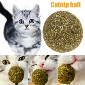 Catnip Ball Kitten Coated Mint Cat Toy Natural Training Cat Favor Pets Supply