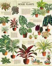 Cavallini & Co - House Plants 1000 Piece Jigsaw Puzzle FREE SHIPPING