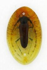 Antique A. Walter Nancy Pate De Verre Beetle Art Glass Pendant