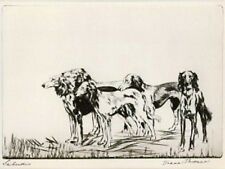 Rare Dog Print 1935 by Diana Thorne Saluki Dog Pack