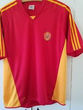 men's Large Spain jersey