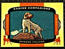 2017 Goodwin - Canine Companions Patch - Spinone Italiano