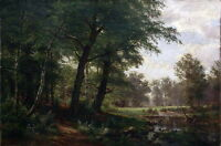 Art Oil Shishkin Ivan Ivanovich - Forest landscape with stream in sunset scene