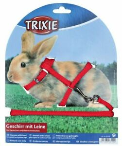 Trixie Rabbit Harness & Lead Set Adjustable Nylon Small Animal Pet Exercise