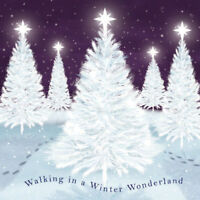 A Winter Wonderland Christmas Cards 10 pk - Sold in Aid of the RAF Association