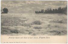 American Rapids and Head of Goat Island, Niagara Falls Postcard