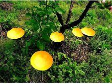 "24"" Yellow Poppy Garden Stakes Metal Art Decoration Oudoor Yard Decor Set of 5"
